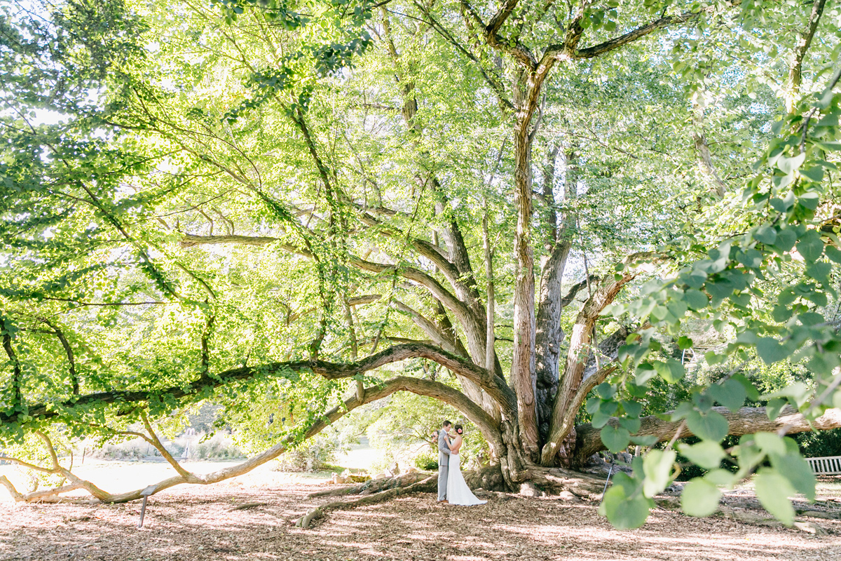 Lush Green Morris Arboretum Wedding | Philadelphia Wedding Photographer | Emily Wren